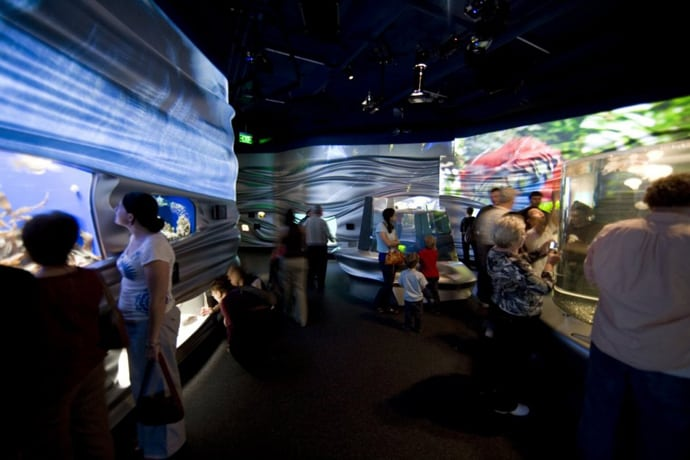 Steinhart Aquarium with 3D Rippling Fluid Walls by Urban A&O, San Francisco, California   DesignRulz.com