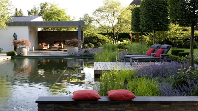 Build Pond Your Backyard