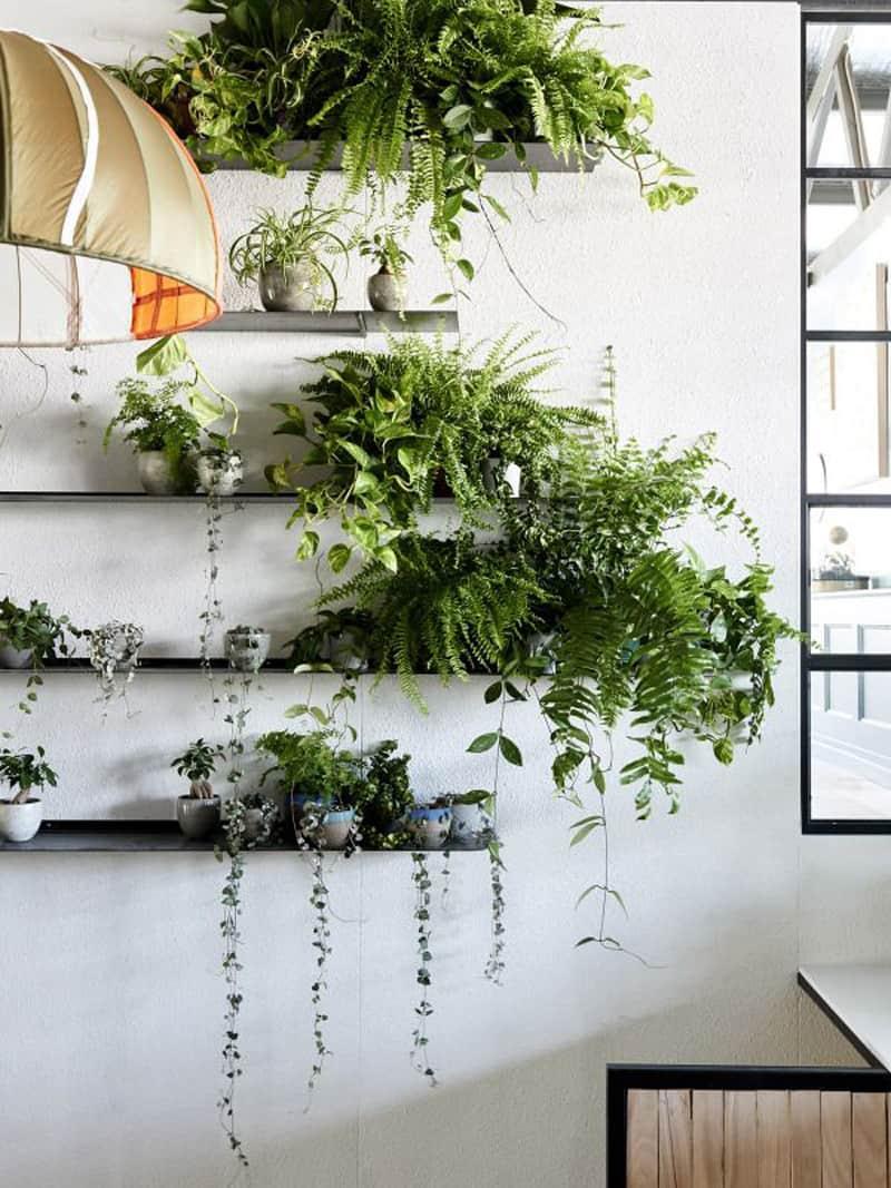 Garden Decoration Store