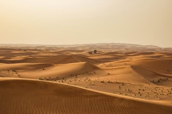 Deșertul este un ecosistem natural