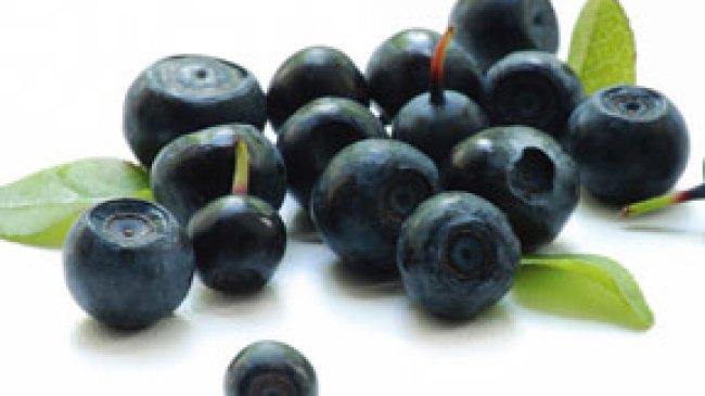 Lancarkan Pencernaan dengan Buah Acai Berry