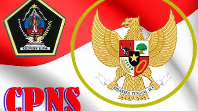 Jadwal Pengumuman Ujian CPNS Tenaga Honorer K-2 Kab. Blitar