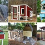 20 Free Diy Chicken Coop Plans You Can Build This Weekend Diy Crafts