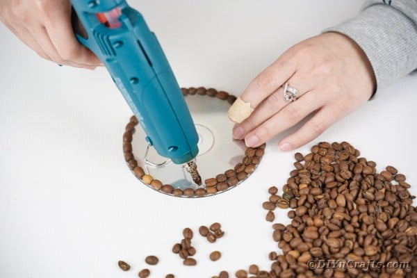 Gluing coffee beans to CD