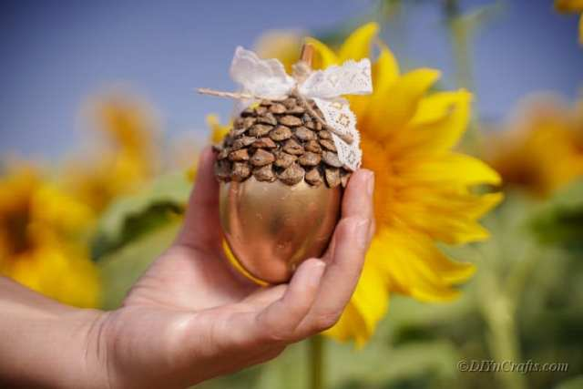 altın kısaltmayı görüntülemek için ayçiçeğine kadar tutan kadın
