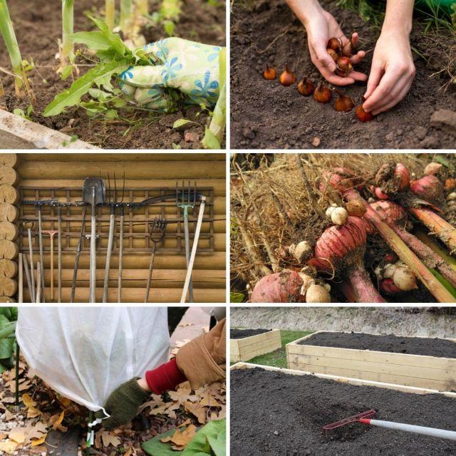 Sonbahar bahçesi görevlerini içeren kolaj fotoğrafı.
