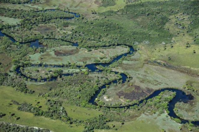 Este bioma concentra grande parte da população brasileira e, mesmo com a redução, apresenta a maior captação de água do país, com destaque para o abastecimento urbano