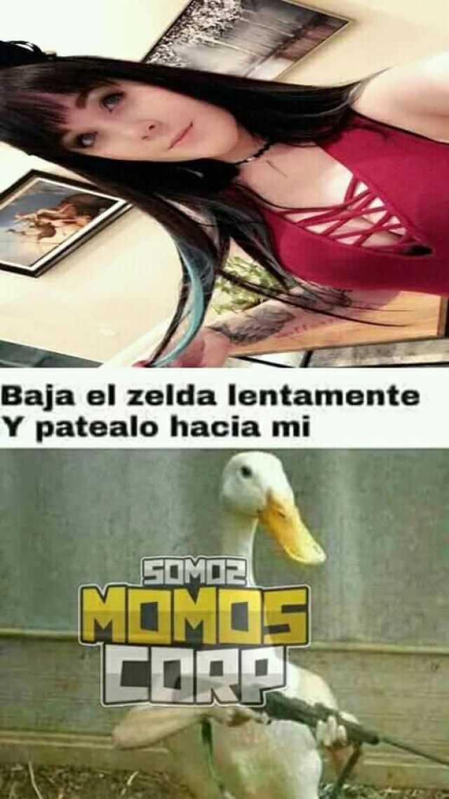 Dopl3r Com Memes Baja El Zelda Lentamente Y Patealo Hacia Mi