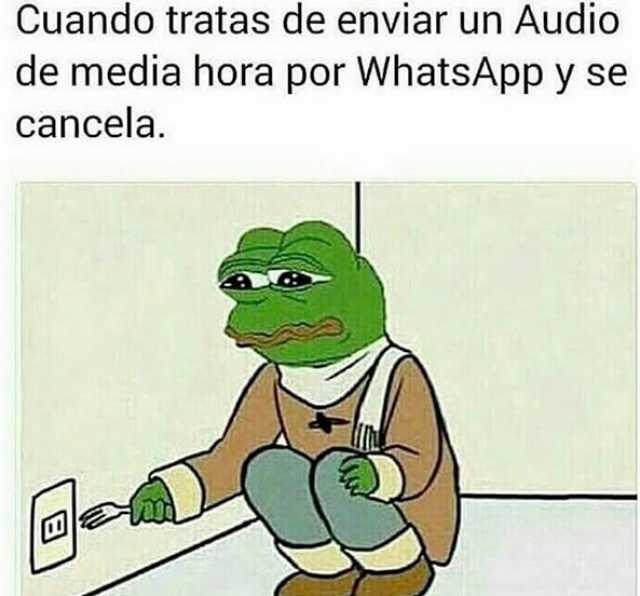 Cuando Te Envian Un Audio De 5 Minutos Por Whatsapp No Se Puede