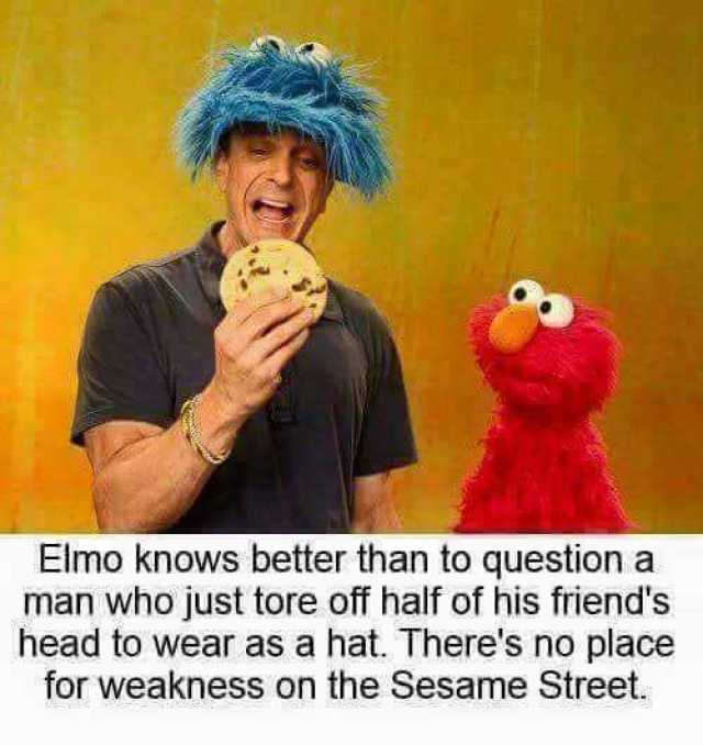 Dopl3r Com Memes Elmo Knows Better Than To Question A Man Who