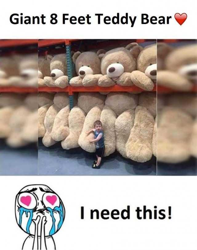 Dopl3r Com Memes Giant 8 Feet Teddy Bear I Need This