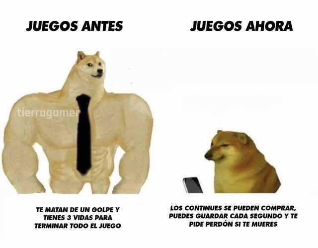 Dopl3r Com Memes Mi Mama Le Corto El Pelo A Mi Perro Y Ahora