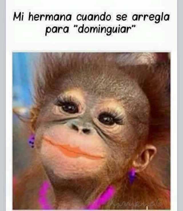 Dopl3r Com Memes Mi Hermana Cuando Se Arreala Para Dominguiar