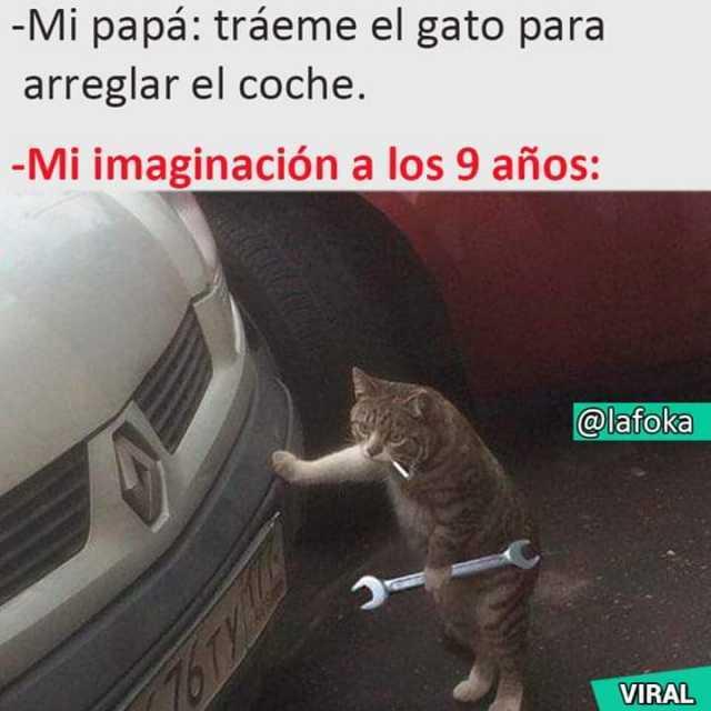 Dopl3r Com Memes Mi Papa Traeme El Gato Para Arreglar El Coche