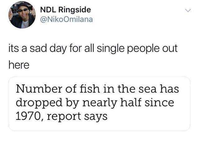 Dopl3r Com Memes Ndl Ringside Nikoomilana Its A Sad Day For