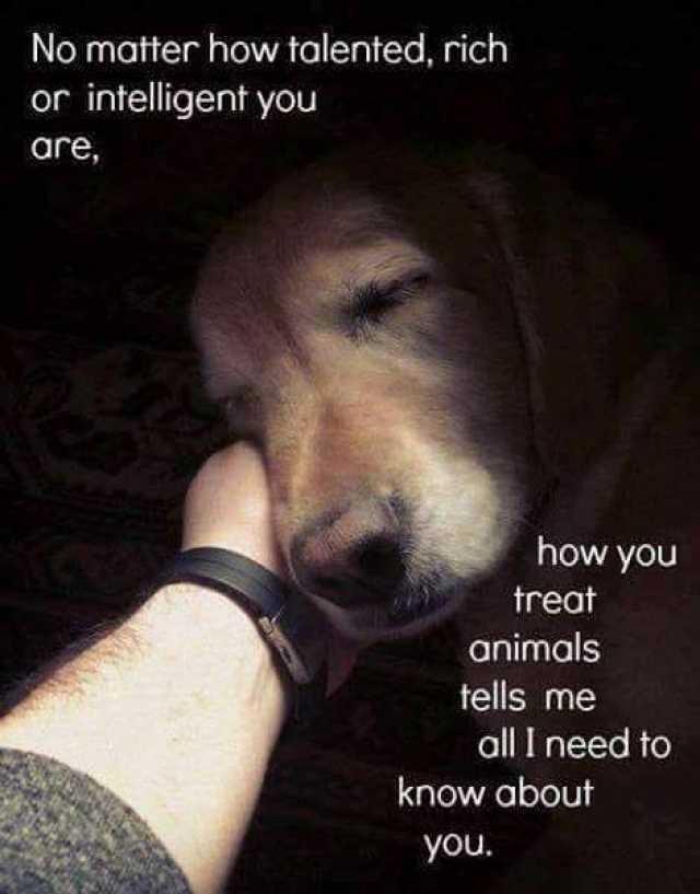 All Lives Matter Meme On Imgur