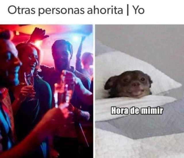 Dopl3r Com Memes Otras Personas Ahorita Yo Hora De Mimir