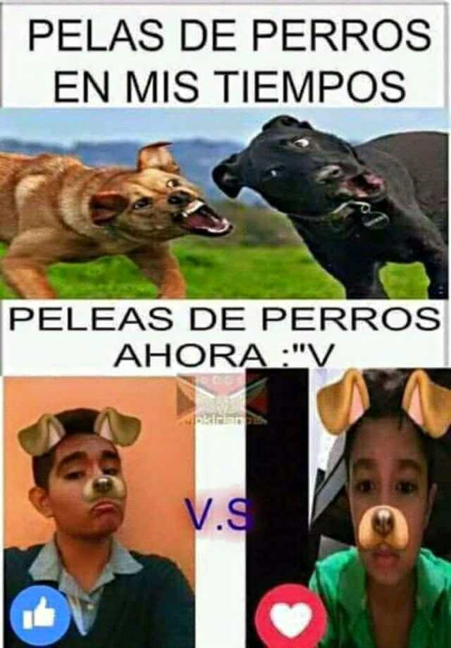 Perro Grande Y Perro Chico El Meme Del Momento Que Se Burla De