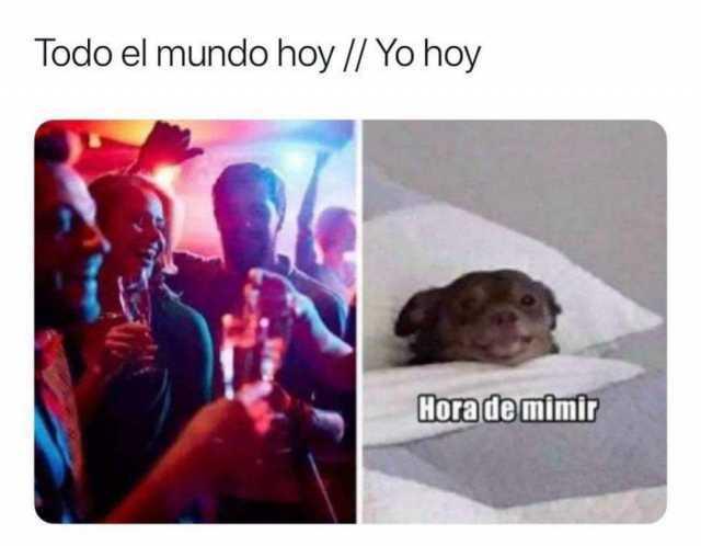 Dopl3r Com Memes Todo El Mundo Hoy Yo Hoy Hora De Mimir