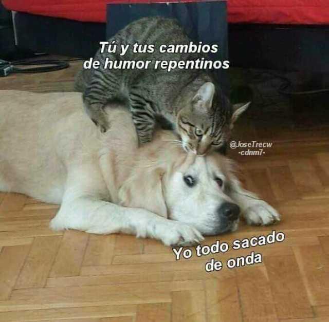 Meme Personalizado Tu Cambio De Humor Debido A La Menstruacia N