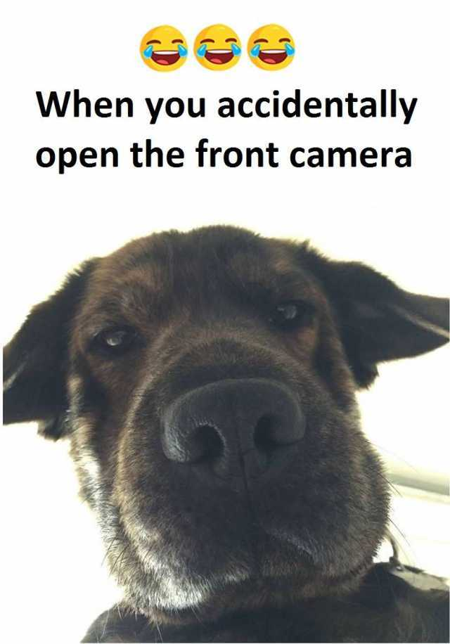 Especially From Front Camera Memes