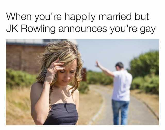 20 Years Of Harry Potter Get Rofl Ing With These 20 Crazy Memes
