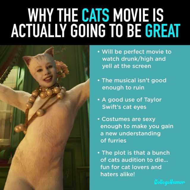 If You Have Coins Cats 2019 Film Know Your Meme