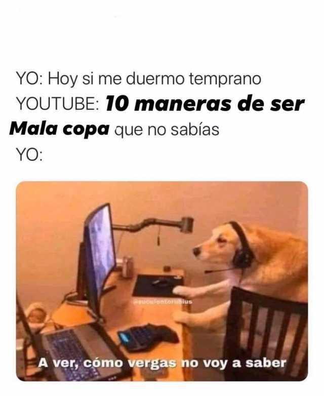 Dopl3r Com Memes Yo Hoy Si Me Duermo Temprano Youtube 10