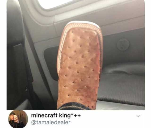 Thought Ass Fat It Blows My Mind How Ppl Think These Are Nice Unpopularopinion Minecraft King