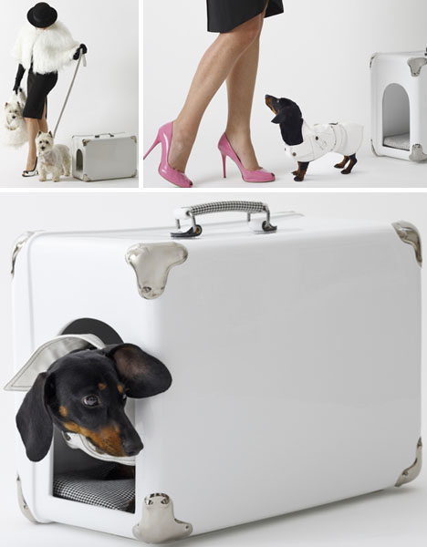 creative-pet-carrying-case-design