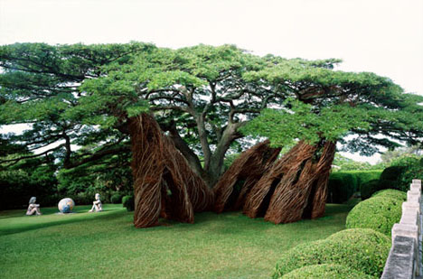 natural shaped arbosculpture