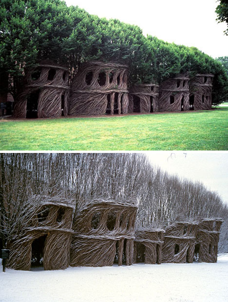 natural shaped tree houses
