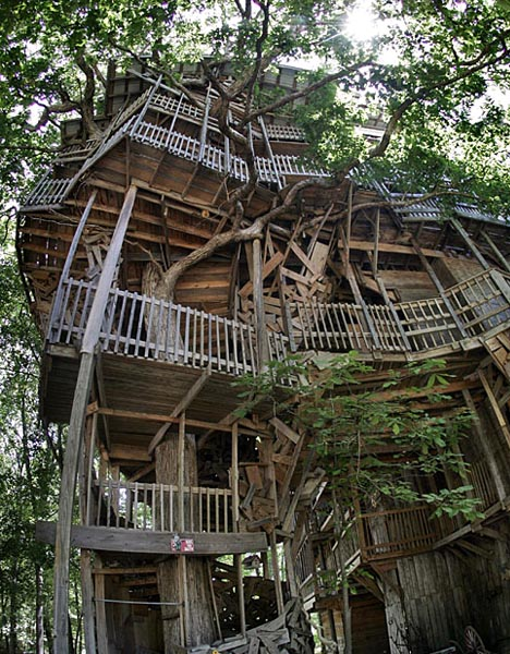 giant handmade tree house