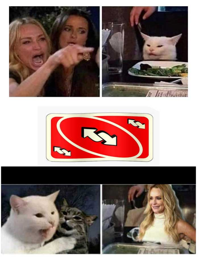 66 Woman Yelling At A Cat Memes That Still Slap In 2020 Funny
