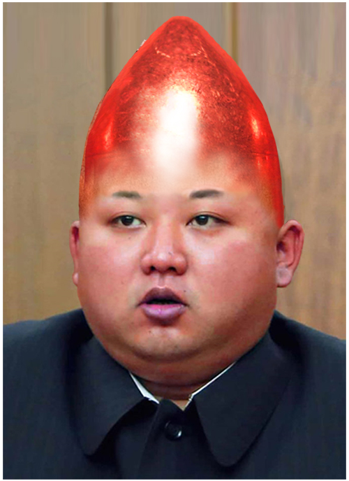 Kim Jong Un Hair Collection Gallery EBaums World