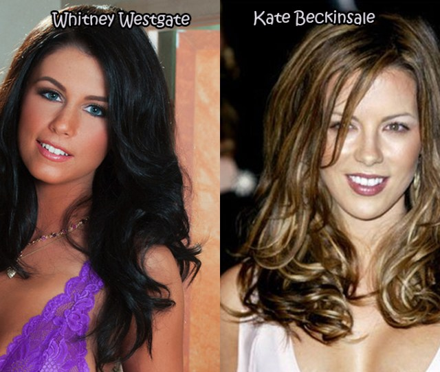 Celebrities And Their Pornstar Lookalikes