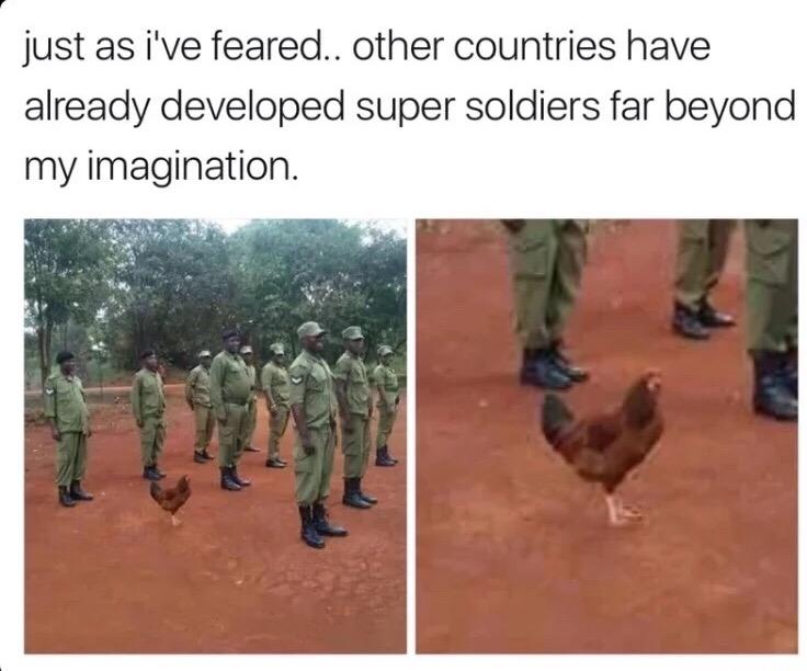 combat chicken