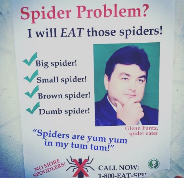 eat spiders