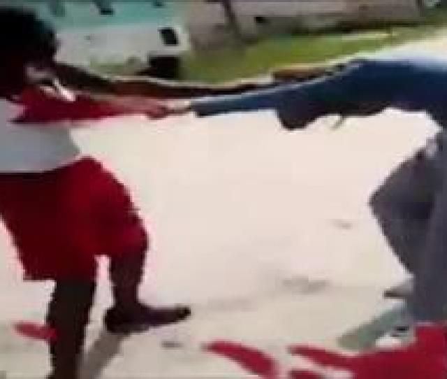 Girl Cat Fight