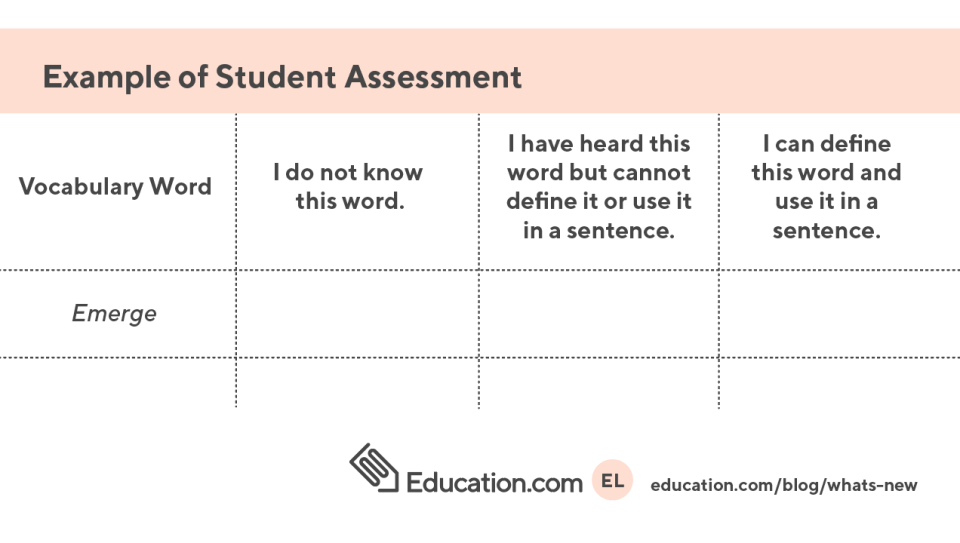Example Student Assessment