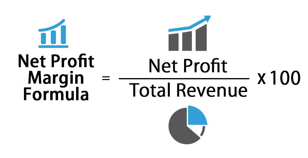 Net Profit Margin Formula | LaptrinhX