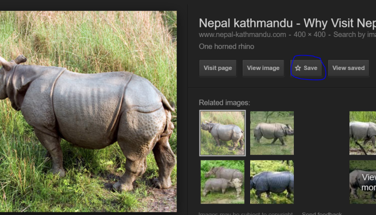 Google Save. New place to save Google Image Search & Website links.