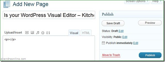 Lost Kitchen sink/Visual Editor in WordPress