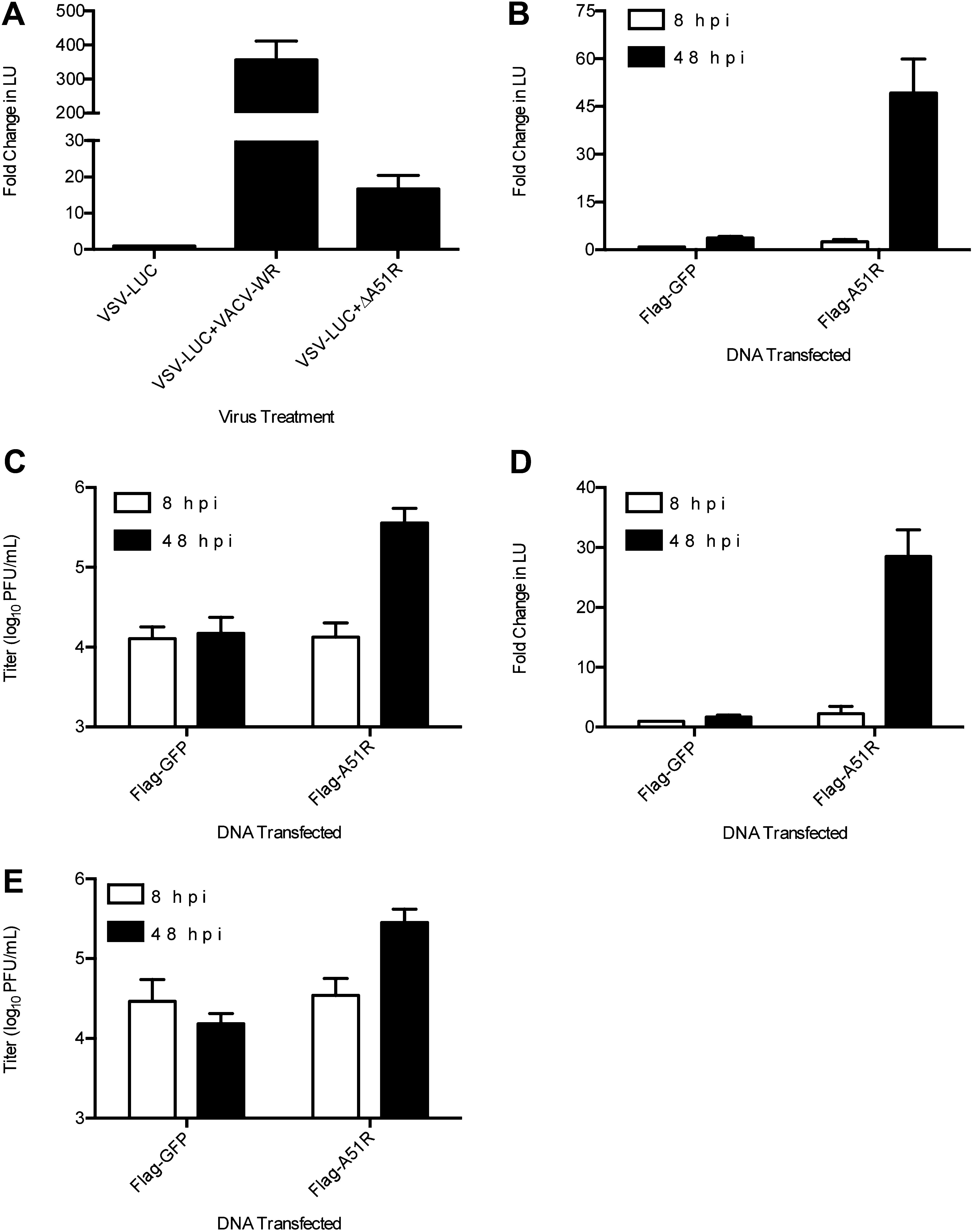 A Single Vertebrate Dna Virus Protein Disarms Invertebrate
