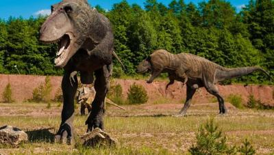 ¿De qué tamaño eran los tiranosaurios al nacer?
