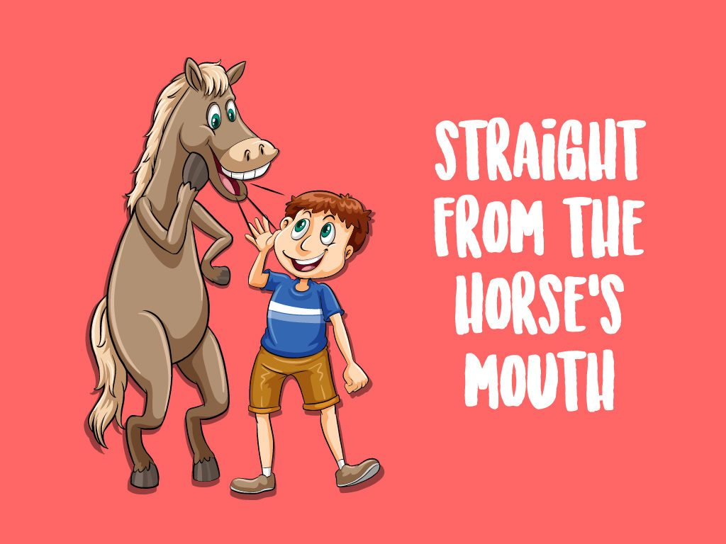 Funny Idioms And Phrases