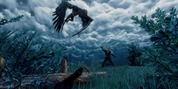 The Witcher 3 griffin
