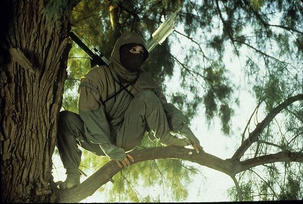 Ninja Trilogy Female Ninja