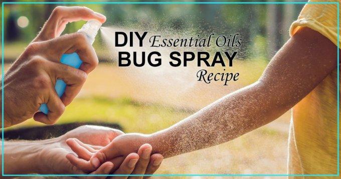 essential oils bug spray recipe