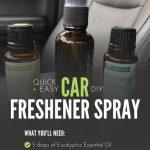 Diy Car Freshener Spray Recipe Using Essential Oils Quick Easy